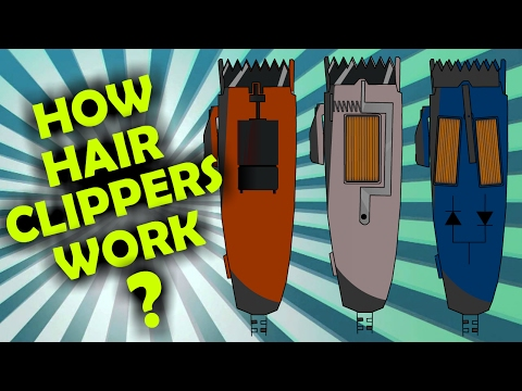 how-rotary,-magnetic-and-pivot-hair-clipper-motors-work?