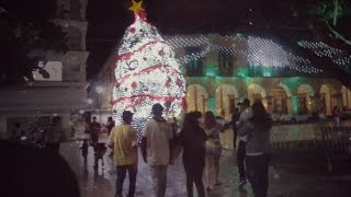 Video EL DEFORME ÁRBOL DE SAN ANDRÉS 1-Enero-2017 download MP3, 3GP, MP4, WEBM, AVI, FLV Oktober 2018