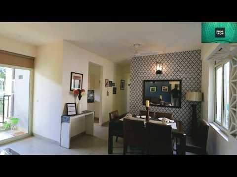 2 Bhk 3 Bhk Apartment Nice Interior Design Stellar One Sector 1 Noida Extension Youtube