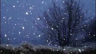 Winter Sky/Zimsko Nebo (Jerry Grcevich)