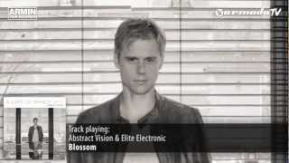 Abstract Vision & Elite Electronic - Blossom