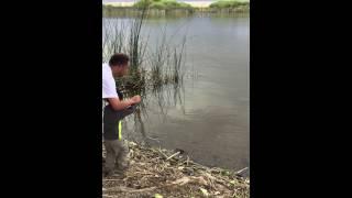 Nesbitt Lake NV 5/14/15