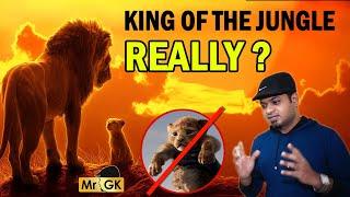 உண்மையில் சிங்கம் காட்டுக்கு ராஜாவா? | The Lion King facts | Mr.GK