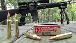 .223 Hornady VMAX 55 gr Varmint Express at 200 and 300 Yards
