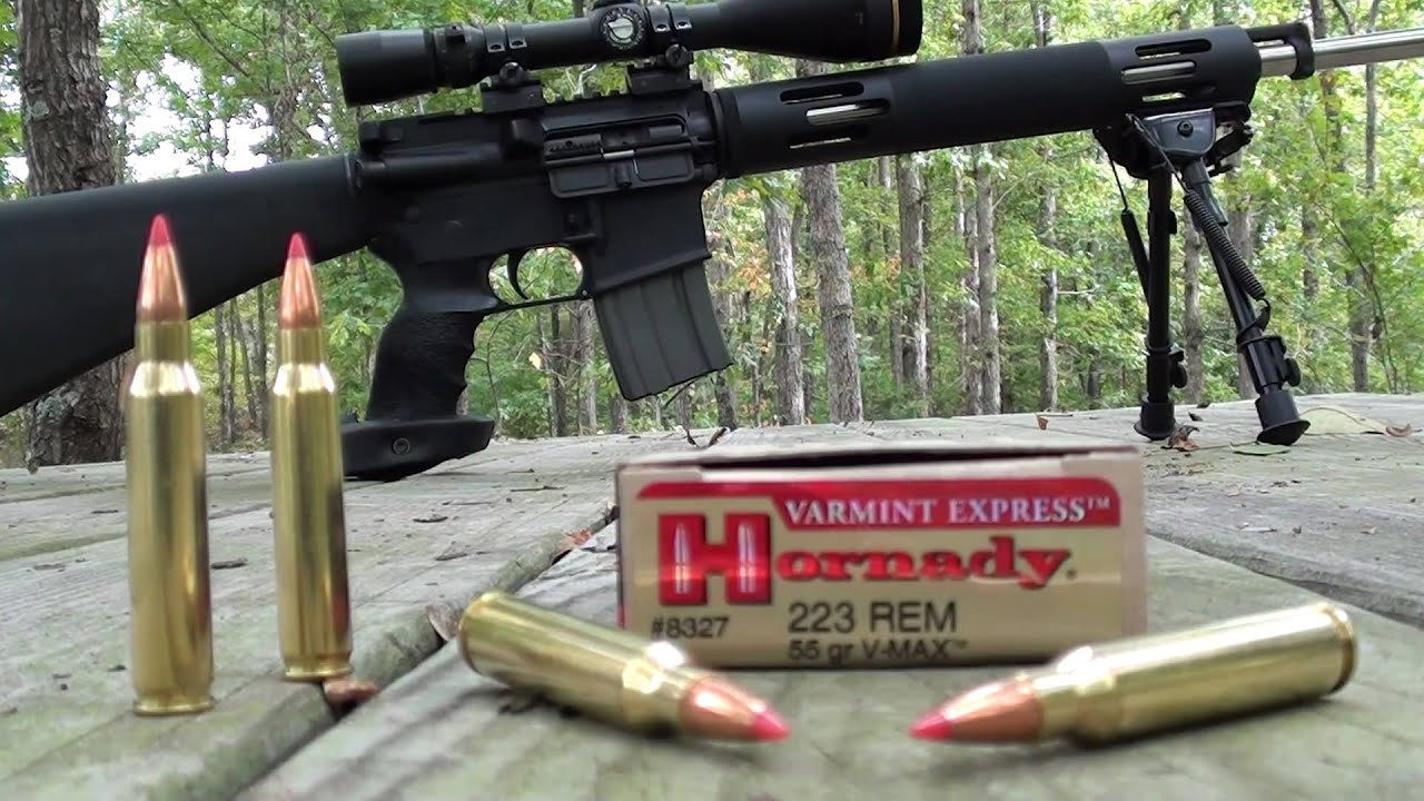 .223 Hornady VMAX 55 gr Varmint Express at 200 and 300 ...