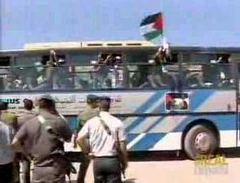 Israel releases over 250 Palestinian prisoners
