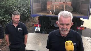 500-Kilo-Bombe in Euskirchen erfolgreich entschärft
