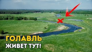 Голавль - молодец! Мой первый ГОЛАВЛЬ этой весны, на поразительно красивой реке!