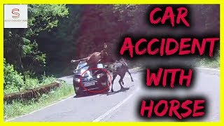 Car Accident With Horse Caught on Camera | Selva Shocker Tamil | Subscribe | HD |