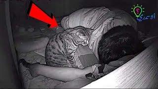 شك هذا الرجل في تصرفات قطته .. فوضع كاميرا مراقبة .. و عندما فتح الفيديو شاهد ماذا وجد !!