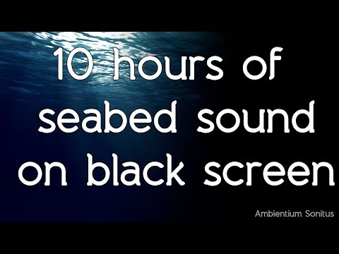 🎧 Seabed sound with whales in high quality white noise HQ ASMR sounds of nature relax meditate study