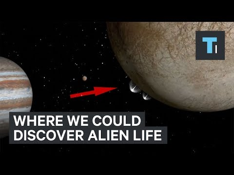 The closest, most compelling places where we could discover the first alien life
