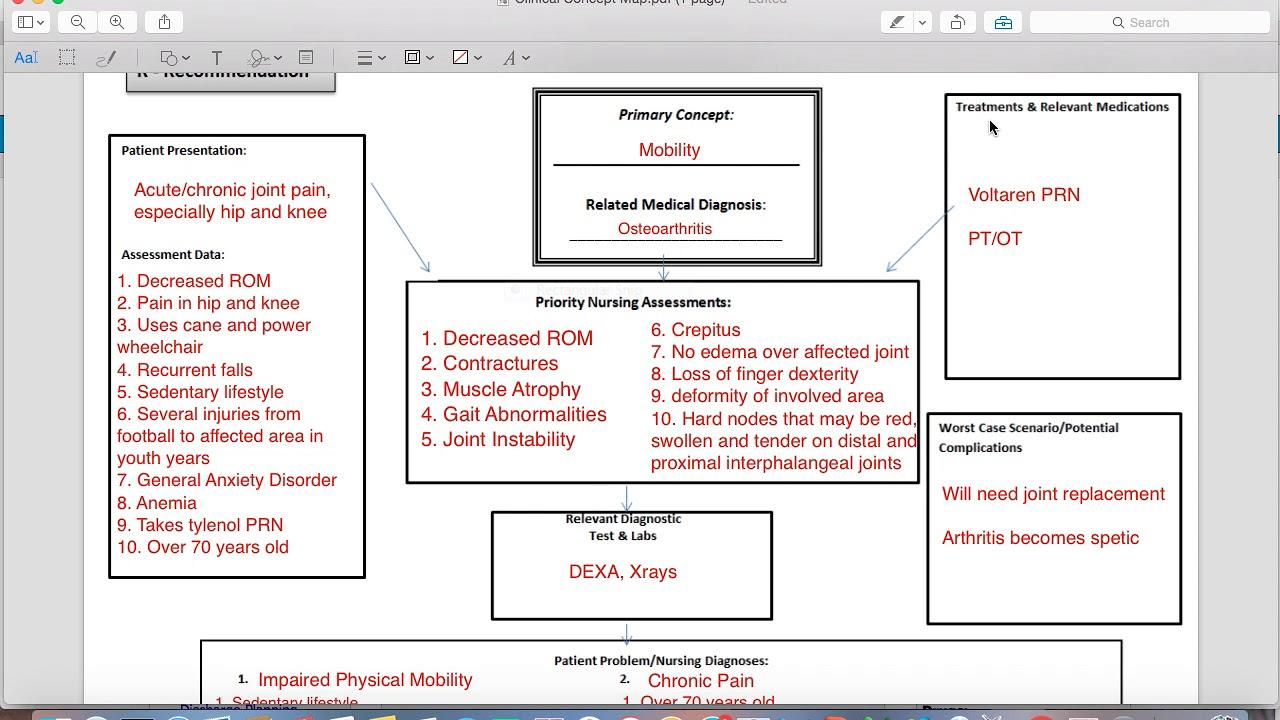 nursing concept map