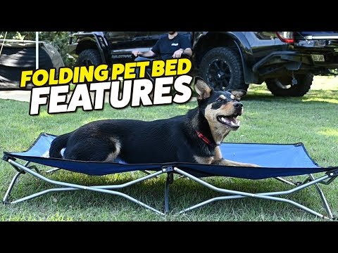 Adventure Kings Folding Dog Bed Features