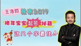 【生肖姓名学2019】姓名学专家王浩骅独家2019猪年宝宝起名秘籍:这几个字最佳!