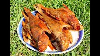 Рыба Горячего Копчения.Как правильно закоптить окуней. How to smoke a Perch!