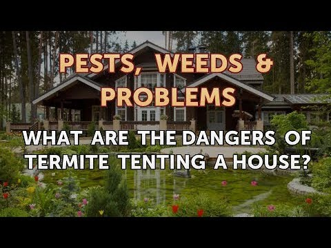 termite tenting dangers what are the dangers of termite tenting house youtube