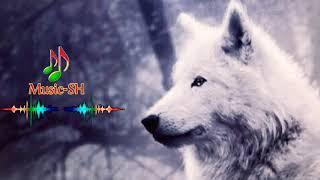 ريمكس استكنان تركي 2020_موسيقى الذئب