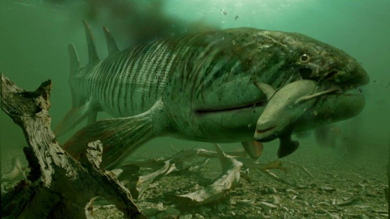 Top 5 Devonian predators