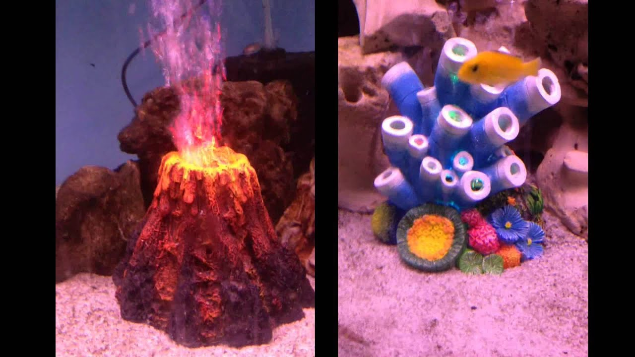 NEW* LED Volcano and Coral Ornaments - YouTube