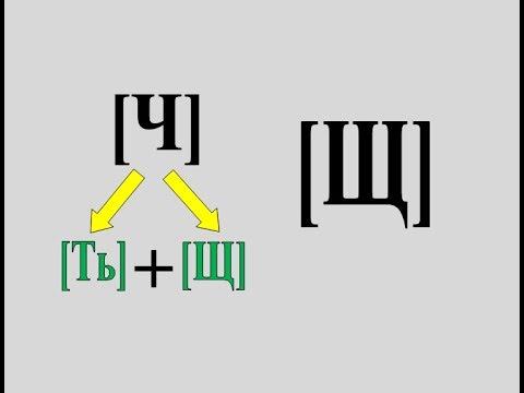 Дифференциация звуков Ч-Щ (видеоурок)