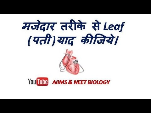 Plant Morphology for NEET and AIIMS (leaf-1)