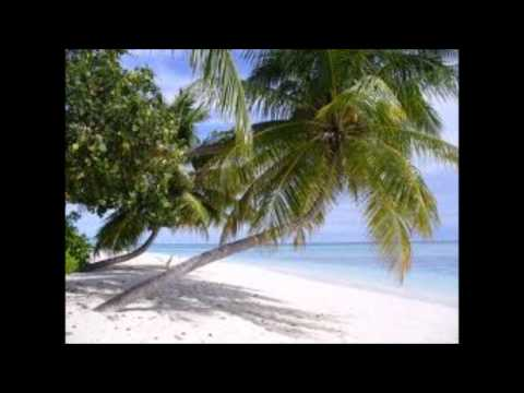 Maluku MASNAIT 2 songs.wmv