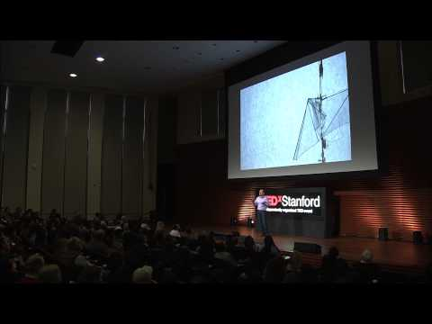 Drones of a Feather | David Lentink | TEDxStanford