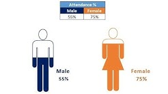 Male and Female  Info-graphics in Excel