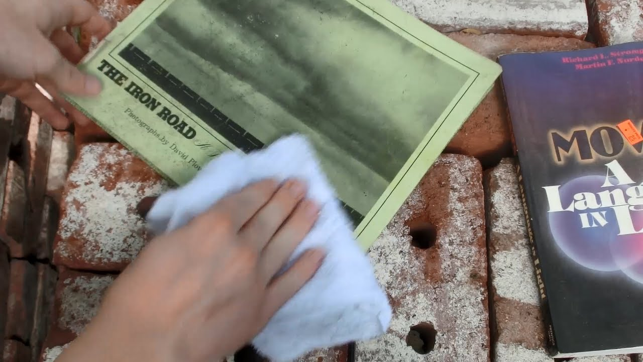 Mold Removal, Book Cleaning attempt 1: Hydrogen Peroxide, Washcloth ...