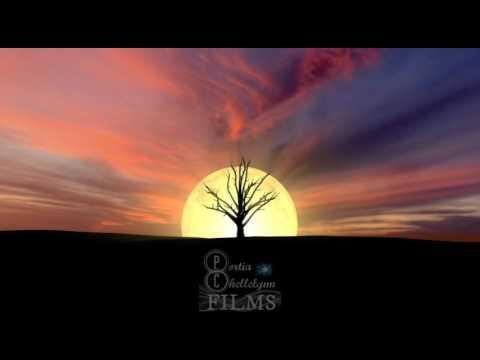 Portia Chellelynn Films Trademark  & Logo