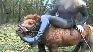 Politie Houdt Twee Ponypletters Aan