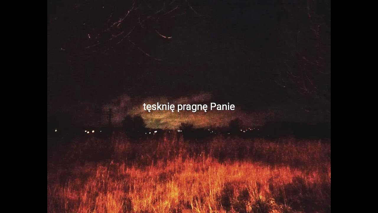 Pinokio Brothers - Pragnienie tęsknoty [Official Lyric Video] #1