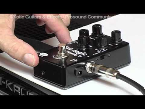 Vail Johnson with E.W.S. Tri-logic Bass preamp Ⅱ