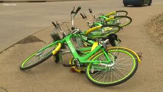 Bike-sharing companies respond to warning