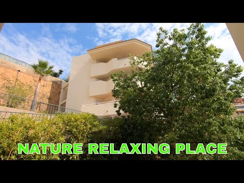 [ASMR] Nature Relaxing Place With Real Sounds With Birds Chirping In The Morning
