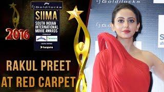 Gorgeous Rakul Preet At SIIMA 2016 - Telugu Red Carpet