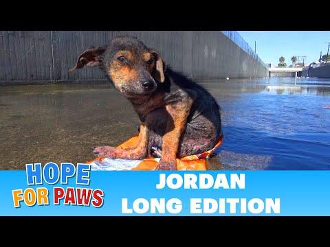 Jordan's Journey - The extended version.