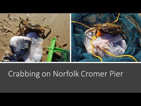 Catching Crabs On Cromer Pier In Norfolk