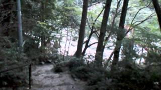田辺南部海岸県自然公園(奇絶峡)和歌山県2011/10/17