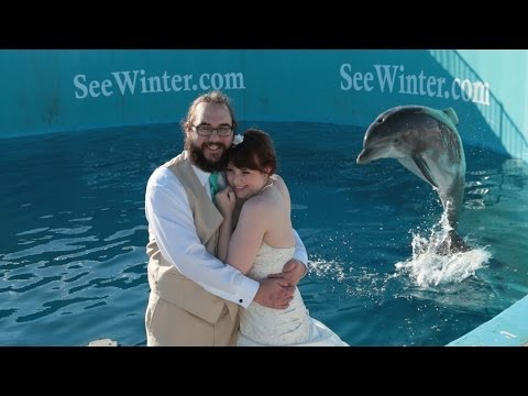 Clearwater Marine Aquarium Wedding