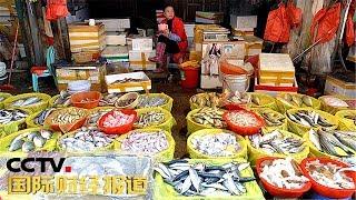 [国际财经报道]投资消费 开渔归来鱼满仓 南海水产新鲜上市| CCTV财经