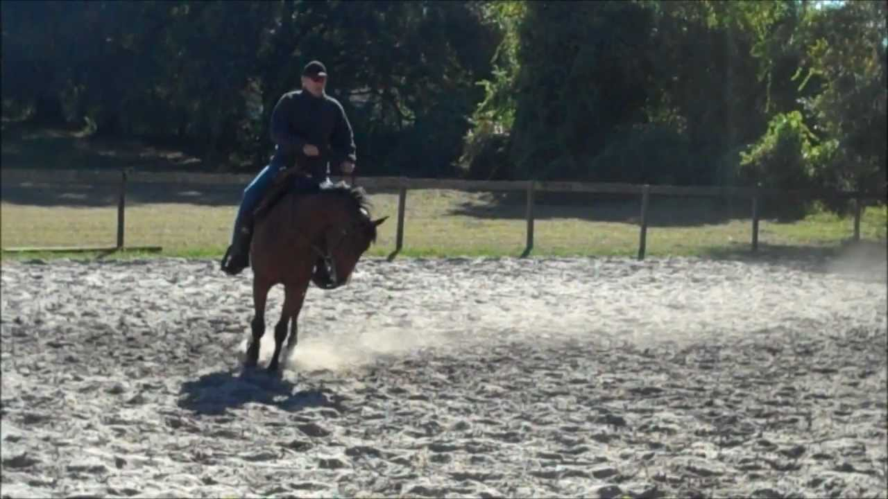 Western Pleasure Training Pushing Through at the LOPE!