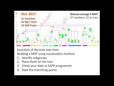 How to Build a Mutation History Tree - FTDNA Conference 2017