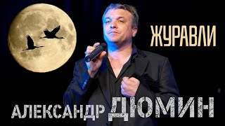 Смотреть клип Александр Дюмин - Журавли
