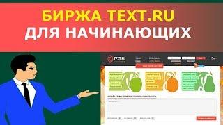 Биржа копирайтинга Text.ru: обзор для новичков