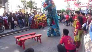 Special Saturday SF Chinatown Lion Dance 8/3/2019