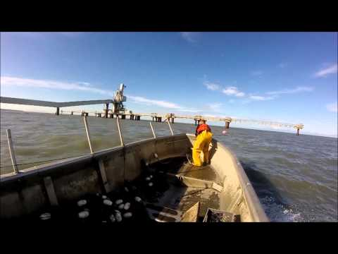 setting a gill net in the Cook Inlet