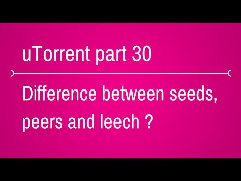 What is the difference between seeds leechers and peers