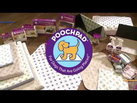 An Introduction To PoochPad Products